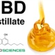 Crystal Resistant Distillate 1g - Non Crystallising Vape Distillate CBD / CBDA